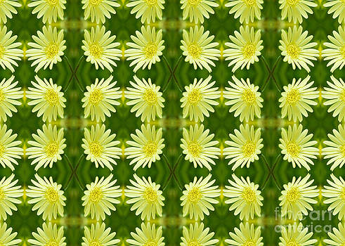 Beverly Claire Kaiya - Pretty Lemon Yellow Daisies