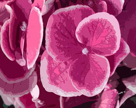 Pretty Pink by Maureen Cunningham
