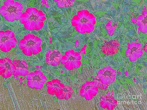 Pretty Purple Pop by Annette Allman