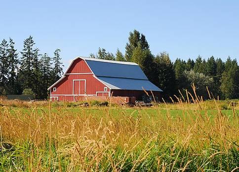 Connie Fox - Pretty Red Barn in Washington