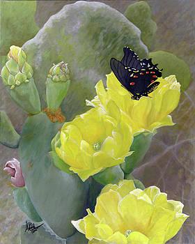 Adam Johnson - Prickly Pear Flower