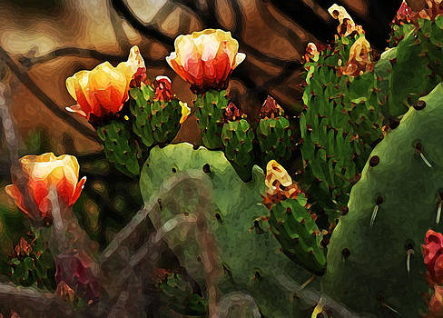 Joe Bledsoe - Prickly Pear in Bloom