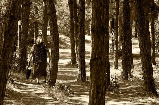 Prishtina Park by Blaise Pellegrin