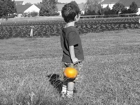 Prize pumpkin by Rollin Jewett