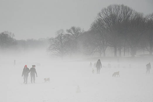 Prospect Park Brooklyn in Winter by Julie VanDore