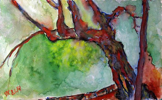 Prospect park - tree  by Vladimir Kezerashvili