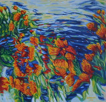 Protea Flowers by Enrique Ojembarrena