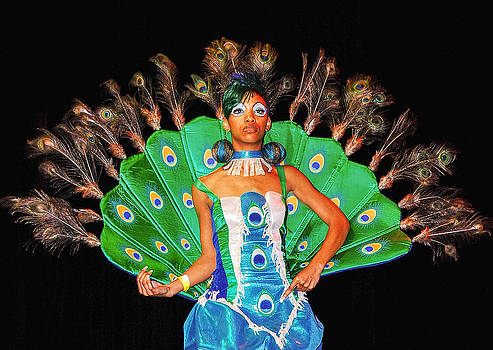 Proud as a Peacock by Errol Wilson