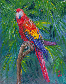 Proud Parrot by Lee Stockwell