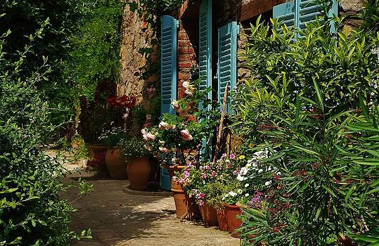 Provencal alley by Dany Lison