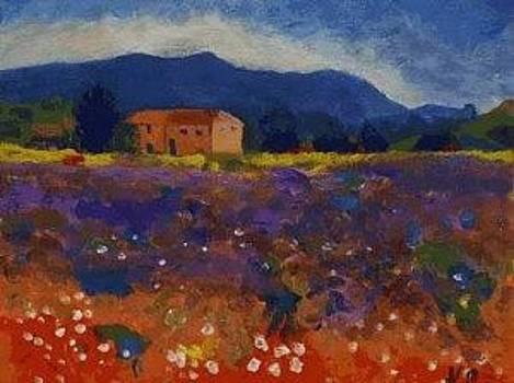 Provence by Andrea Kucza