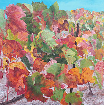 Provence Vineyard by Steven Fleit