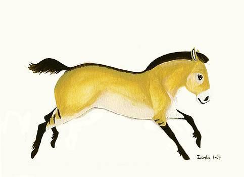 Przewalski's Horse by Lori Ziemba