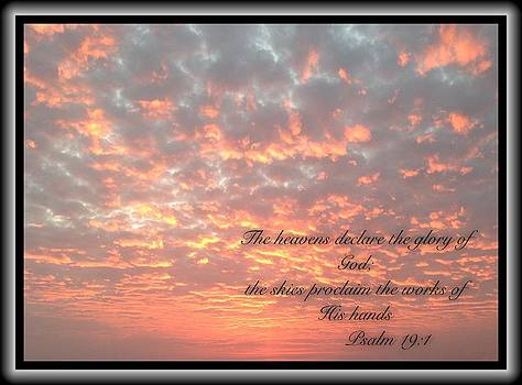 Psalm 19 11 by Scripture Pictures