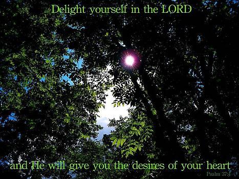 Psalm 37 by Mark Behrens