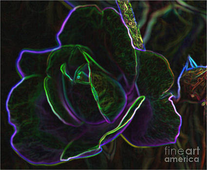 Psycholdelic Rose Abstract by Judy Palkimas