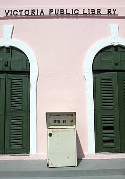 Ramunas Bruzas - Public Library