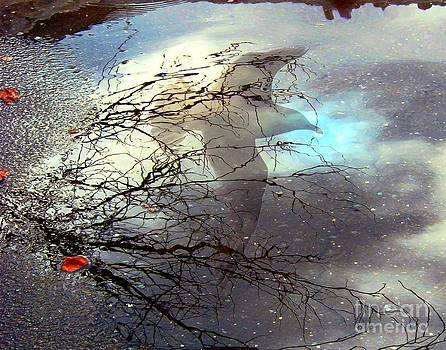 Dale   Ford - Puddle Art