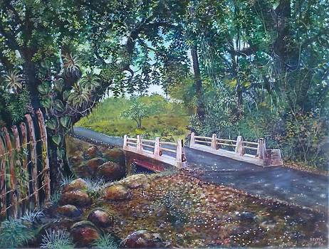 Puente al pasado by Ricardo Sanchez Beitia