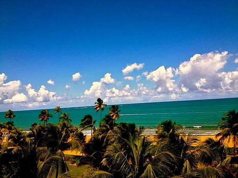 Puerto Rican Escape  by Danielle  Broussard