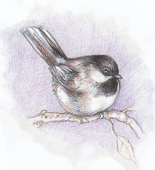 Peggy Wilson - Puffed up Chickadee