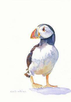 Puffin by Cynthia Roudebush