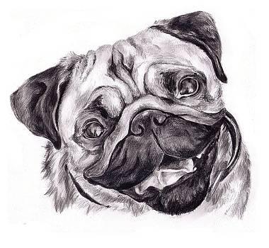 Pug by Cassandra Gallant