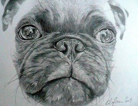 Pug by Skyrah J Kelly