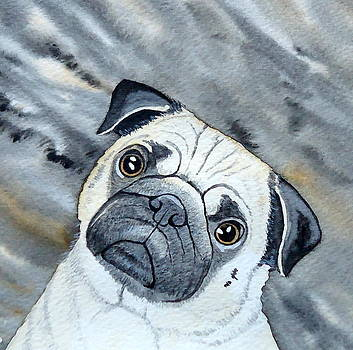 Pug by Laurie Anderson
