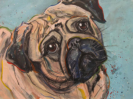 Pug by Mary Gallagher-Stout