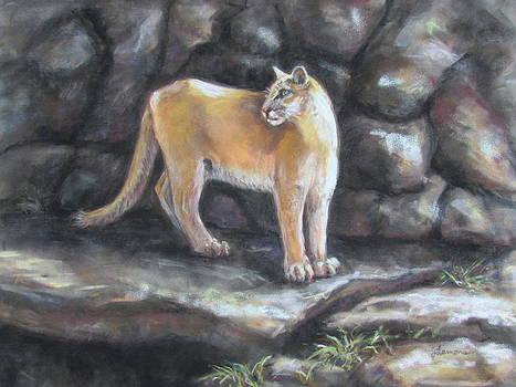 Puma Sampson by Julie Lemons
