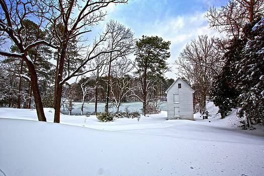 Regina  Williams  - Pump House by the Pond