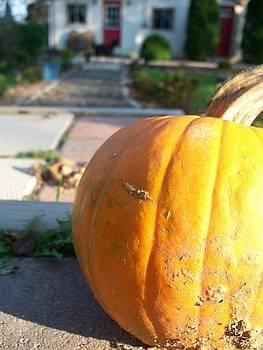 Pumpkin by Megan Everett