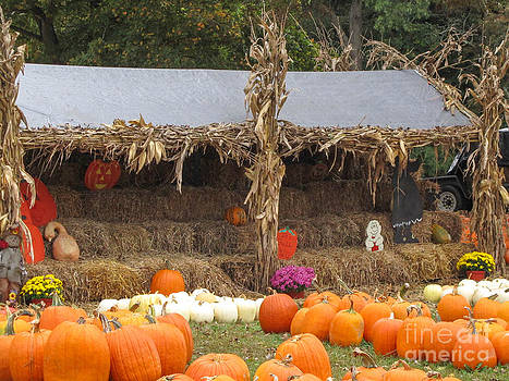 Jaclyn Hughes Fine Art - Pumpkin Patch Visit