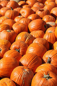 Pumpkins in Waiting by Mike Watson
