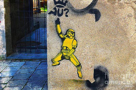 Punk Stormtrooper by Christian LeBlanc