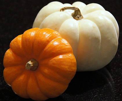 Pumpkins by Debi Demetrion