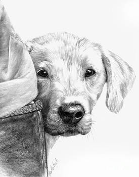 Puppies and Wellies by Sheona Hamilton-Grant