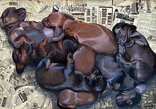Puppy Breath by Lena Quagliato