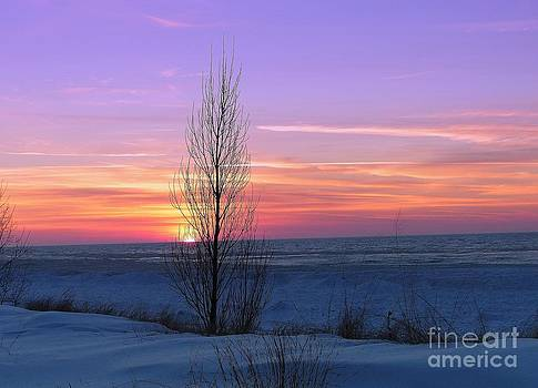 Pure West Michigan Winters Sunset  by Jack  Martin