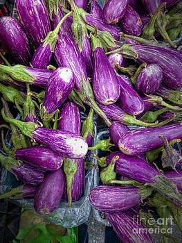 Dee Flouton - Purple and White Eggplants