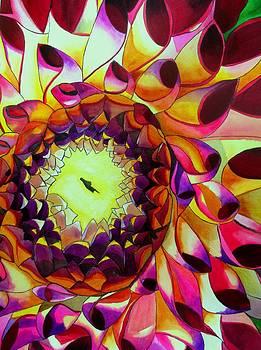 Purple Dahlia by Sacha Grossel