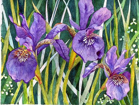 Susan Duxter - Purple Floral