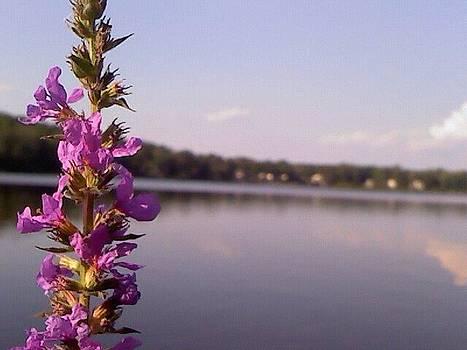 Purple Flowers by Courtnee Epps
