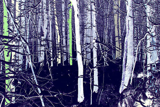 Anne Barkley - Purple Forest