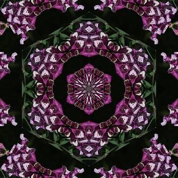Valerie Kirkwood - Purple Foxglove Kaleidoscope