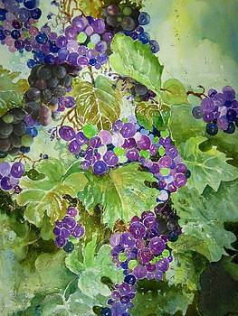 Purple Grapes by Marilyn  Clement