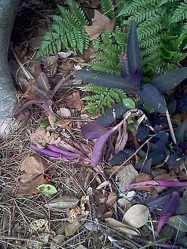 Purple Heart by Maura Garcia