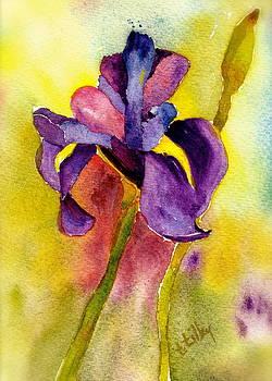 Purple Iris II by Teresa Tilley