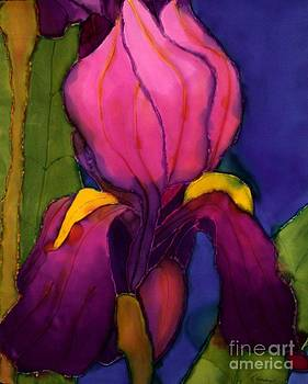 Purple Iris by Goodson Kathy